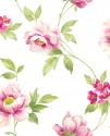 Product: EG50501-Wild Rose