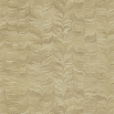 Product: 311729-Jaipur Plain