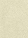 Product: CW541014-Quartz