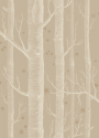 Product: 10311047-Woods & Stars