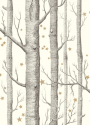 Product: 10311050-Woods & Stars