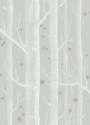 Product: 10311051-Woods & Stars