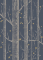 Product: 10311052-Woods & Stars