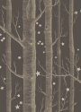 Product: 10311053-Woods & Stars