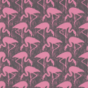 Product: 214567-Flamingos