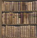 Product: IWB00844-Trinity Library
