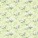Product: 321446-Magnolia Bough