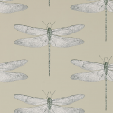 Product: 111241-Demoiselle