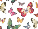 Product: JB60300-Butterfly