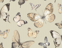 Product: JB60308-Butterfly