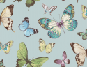 Product: JB60302-Butterfly