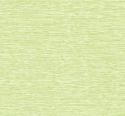 Product: JB62204-Tikki Grass