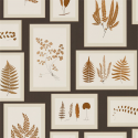 Product: 215713-Fern Gallery