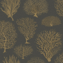 Product: 1072006-Seafern