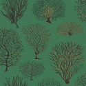 Product: 1072007-Seafern