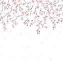 Product: 62603-Sakura Sky