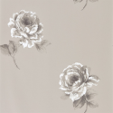Product: 216279-Rosa