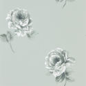 Product: 216278-Rosa