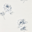 Product: 216277-Rosa