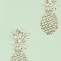 Product: 216325-Pineapple Royale