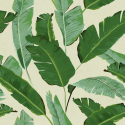 Product: WP20111-Banana Leaves