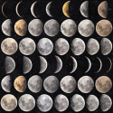 Product: WP20066-Moon Phases