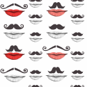 Product: WP20084-Moustache and Lips