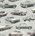 Product: TH52809-Detroit Cars