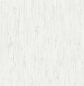 Product: TH50400-Alaska Birch Texture