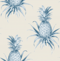 Product: TH52002-Florida Pineapples