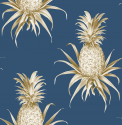 Product: TH52012-Florida Pineapples