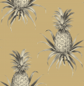 Product: TH52007-Florida Pineapples