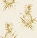 Product: TH52017-Florida Pineapples
