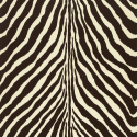 Product: PRL501703-Bartlett Zebra
