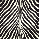 Product: PRL501704-Bartlett Zebra
