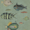 Product: WP20181-Poissons