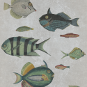 Product: WP20182-Poissons