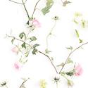 Product: 62404-Growing Garden