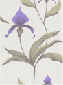 Product: 664024-Orchid