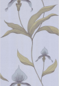 Product: 664026-Orchid
