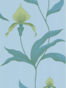 Product: 664029-Orchid