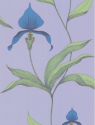 Product: 664031-Orchid