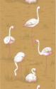 Product: 666045-Flamingos