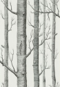 Product: 6912147-Woods