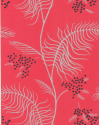 Product: 698130-Mimosa