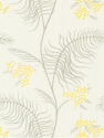 Product: 698132-Mimosa
