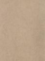 Product: P50231-Ernani