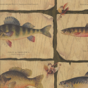 Product: 51671020-Fish Catch