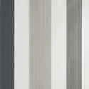 Product: BP4201-Chromatic Stripe