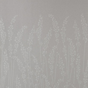 Product: BP5101-Feather Grass